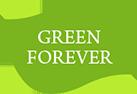 都内近郊の観葉植物レンタルならグリーンフォエバー